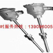 安徽华光仪表线缆公司专业生产:铂热电阻-耐磨铂热电阻