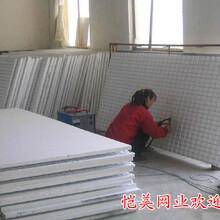 武汉孝感建筑网片,钢筋网片,建筑钢芭网片