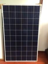 现货供应原厂正A级单晶、多晶太阳能组件