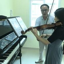 南山白石洲学小提琴零基础教学免费试课新年优惠多多