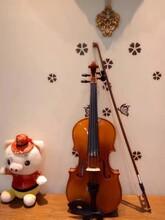 南山科技园寒假优惠学小提琴啦零基础教学一对一辅导还有免费的体验课哦
