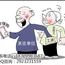 深圳积分入户代理代办/应届毕业生接收入户代办