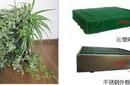 模式植物墙比布袋式植物墙有什么优点