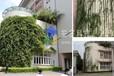 校园教学楼墙面绿化装饰—安友植物墙公司(冬暖夏凉天然空调)