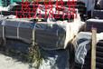 山西泫氏铸铁管管件批发全网最低当天发货