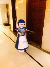 供应穿山甲餐厅机器人可送餐传菜智能娇娇机器人多少钱
