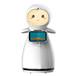 公共服务机器人—小雪迎宾机器人价格为服务业提供解决方案