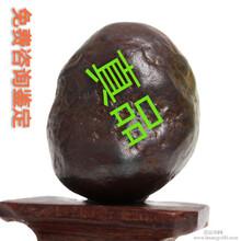 北京嘉德四海拍卖官网查询结果,北京杨力在线提供