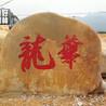 梅州园林石厂家