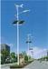 云南厂家供应6米30W太阳能路灯价格
