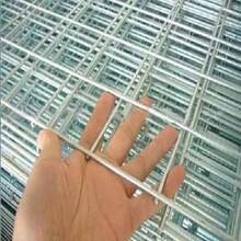 供青海电焊网和西宁镀锌电焊网销售