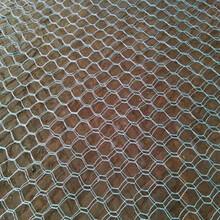 供青海石笼网和西宁镀锌石笼网