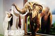 百变奇特彩雕机河北3D浮雕背景墙生产厂家