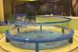 婴幼儿游泳馆赚钱吗---泑泑贝国际水育乐园