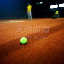 红土网球场