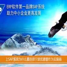 注塑企业管理软件工厂erp管理软件尽在浙江SAP实施商优德普