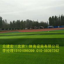 臨汾眾建宏體育硅pu球場建設行業領跑者圖片