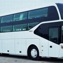 郑州到台州大巴长途汽车直达车图片
