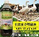 禽用益生菌活菌能治白痢吗