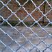 供应门窗防护网铝美格网价格深圳超市铝板网定做