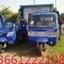 3月大促销,销售租赁农用柴油自卸三轮车