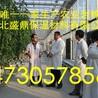 辉县市农科院合作用岩棉无土栽培