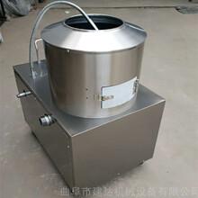 电动削土豆皮机食堂土豆去皮机土豆磨皮机图片