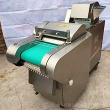 多功能切菜機黃瓜切菜機大蔥切菜機圖片