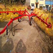 牵引式液压搂草机新疆玉米秸秆搂草机拖拉机带搂草机指盘搂草机图片