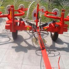 养殖饲料牧草收集搂草机全自动搂草机粉碎秸秆搂集机图片