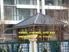 河北唐山塑料屋面瓦,仿琉璃树脂瓦厂家批发