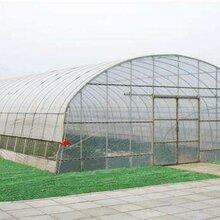 廣州薄膜拱棚設計持久耐用圖片