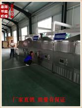 丹东菜籽微波烘烤机厂家图片