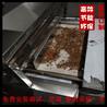 六安昆虫烘烤机