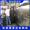 临沂临沂黄豆烘焙生产