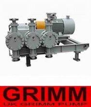 进口三柱塞高压隔膜往复泵(欧美进口十大品牌)图片