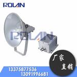 NTC9210-J防震投光灯1000W图片