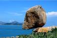 湖南哪里可以交易奇石