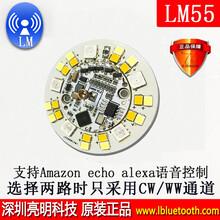 LM55模塊WiFi智能燈模組支持冷暖白/RGB照明控制WiFi照明模塊圖片