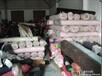 广州布料回收