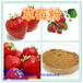 草莓粉的加工及其效益