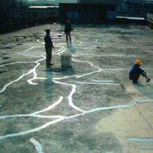 石龙屋顶防水图片
