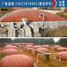 牛糞沼氣池牛場糞污儲存發酵池價格、使用時間長