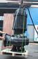 高扬程不锈钢污水泵价格大流量低扬程排污泵厂家