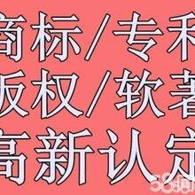 广州市黄埔、萝岗、天河、白云区公司注册,财税代理、高???新企业小巨人项目申请图片