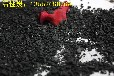 江西经销商粉状活性炭,除味粉状活性炭