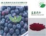 蓝莓提取物花青素25%专业生产