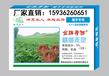 广州魔芋除草剂生产厂家,魔芋除草剂批发价格,魔芋除草剂配方