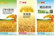 野燕麦特效除草剂,野燕麦除草剂厂家,野燕麦除草剂价格