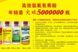 郑州小麦蚜虫特效药厂家,小麦蚜虫用什么药好